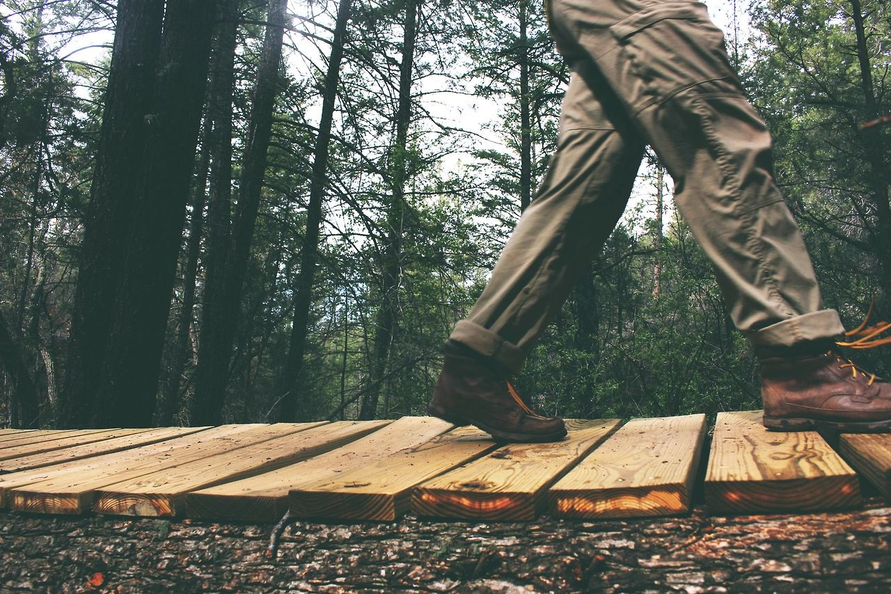 man walking on wood planks in forest